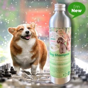 Argan Dog Shampoo